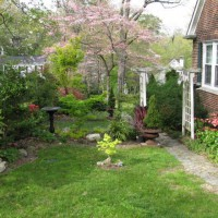 Photo Thumbnail #2: Side Yard