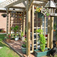 Photo Thumbnail #6: Arbor off patio