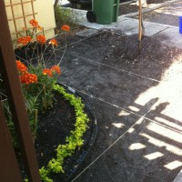 Photo Thumbnail #2: Prepared ground for brick pavers.