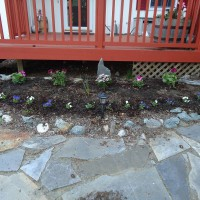 Photo Thumbnail #2: It amazing what a little mulch and spring...