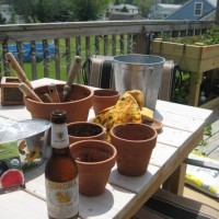 Photo Thumbnail #6: Thai beer on a hot day of planting. :)