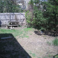 Photo Thumbnail #4: BEFORE: the old fence needs to go!