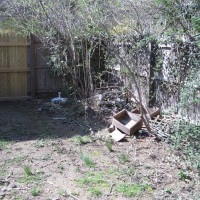 Photo Thumbnail #5: BEFORE: A bunch of trash along the fence