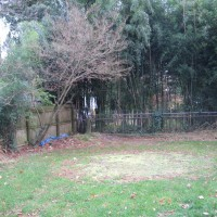 Photo Thumbnail #8: BEFORE: a nice round lawn circle where the...