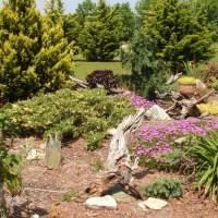 Photo Thumbnail #10: Another view of the rock garden.