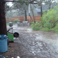 Photo Thumbnail #1:  