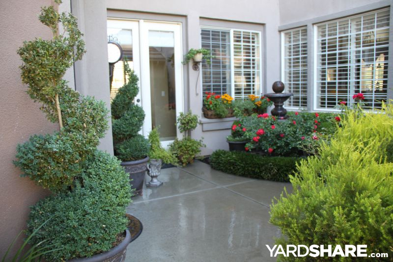 landscaping ideas courtyard