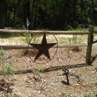 Photo Thumbnail #2: Lone Star State