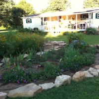 Photo Thumbnail #26: The peony bed 05/13/2012 after rock