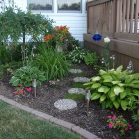 Photo Thumbnail #4: I call this my memory garden on the side of my...