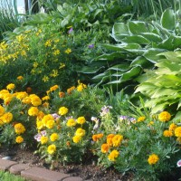 Photo Thumbnail #12: this is a flower bed down by the lake