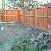 Photo Thumbnail #1: The empty sideyard, after fencing but before...