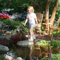 Photo Thumbnail #26: Water Garden