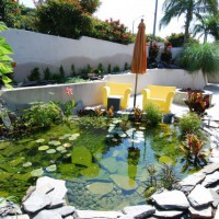 Photo Thumbnail #24: Hermosa beach water garden