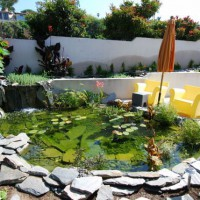 Photo Thumbnail #20: Water garden in Hermosa beach