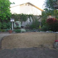 Photo Thumbnail #25: Before photo of redondo beach native garden...