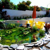 Photo Thumbnail #21: Koi pond in Hermosa Beach
