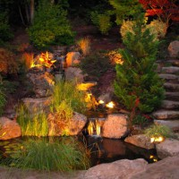Photo Thumbnail #7: Koi pond at night