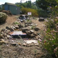 Photo Thumbnail #27: Pondless waterfall at Manhattan Beach Botanical...