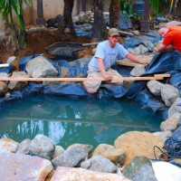 Photo Thumbnail #14: Koi pond getting installed in Redondo Beach
