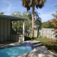 Photo Thumbnail #3: Pool and palm tree