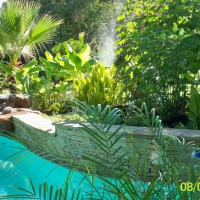 Photo Thumbnail #14: More of the pool garden