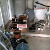 Photo Thumbnail #12: Seeds back in the garage...weather is crash in...