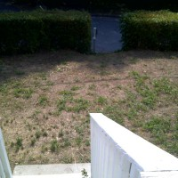 Photo Thumbnail #1: front yard from deck