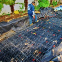 Photo Thumbnail #2: The rainwater harvesting tanks are installed...