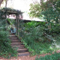 Photo Thumbnail #12: View looking toward the house of the deck arbor...