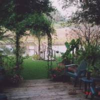 Photo Thumbnail #10: Added a metal arbor over the deck steps with...