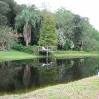 Photo Thumbnail #22: Recent view of the pond and back yard looking...
