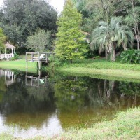 Photo Thumbnail #21: Recent view of the pond and back yard looking...