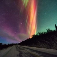 Photo Thumbnail #1: Orange...rarest Aurora