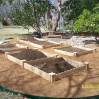 Photo Thumbnail #14: Soil going in