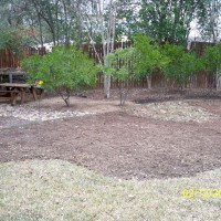 Photo Thumbnail #6: It took me several weekends to remove the grass