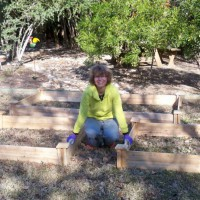 Photo Thumbnail #4: Before digging out the grass, I moved boxes...