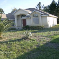 Photo Thumbnail #2: pineapple palm, hibiscus, topiary