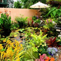 Photo Thumbnail #7: Water Garden