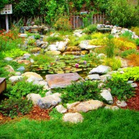 Photo Thumbnail #20: This watergarden has 2 waterfalls