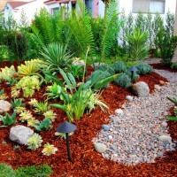 Photo Thumbnail #28: Rain garden complements the native garden to...