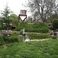 Photo Thumbnail #4: Pond, waterfall, sleuce box fountain, mine...
