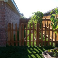 Photo Thumbnail #3: My little side yard garden. NOT EVEN THE SAME...