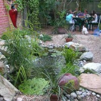Photo Thumbnail #2: The original fish pond.