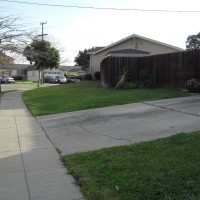 Photo Thumbnail #1: Grass,grass everywhere,with a big ugly driveway!