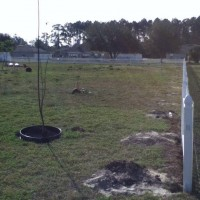 Photo Thumbnail #6: Another view of my nearly barren backyard. Not...