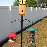 Photo Thumbnail #22: I love having Birds in the yard, so I added...