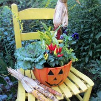 Photo Thumbnail #16: Our Fairfield Home & Garden's autumn chair &...