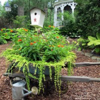 Photo Thumbnail #3: Wheelbarrow Repurposed into Planter with...