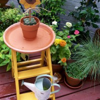 Photo Thumbnail #9: Repurposed Ladder and Potting Materials Used as...